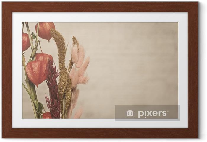 Poster en cadre Vue de plan rapproché de la plante Physalis. Style vintage - Ressources graphiques