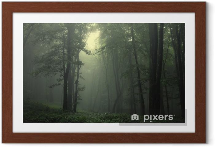 Plakat w ramie Zielony las po deszczu - Style