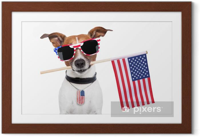 Poster i Ram American hund - Väggdekor