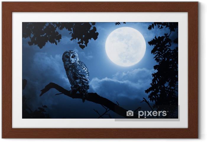 Plakat w ramie Owl Oświetlone Przez pełni księżyca w noc Halloween -