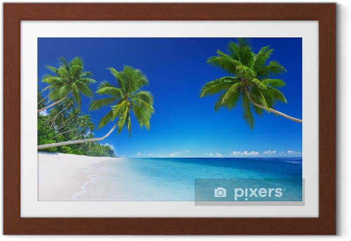 Poster en cadre Paradis tropical - Palmiers