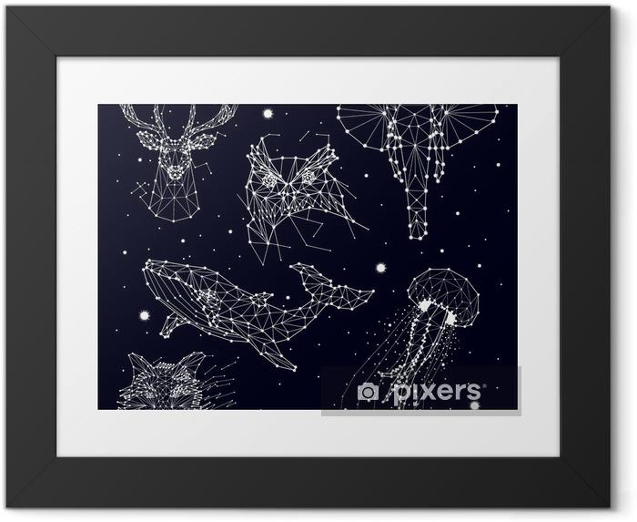 Joukko tähtikuvioita, elefantti, pöllö, peura, valaat, meduusat, kettu, tähti, vektorigrafiikka Kehystetty juliste -