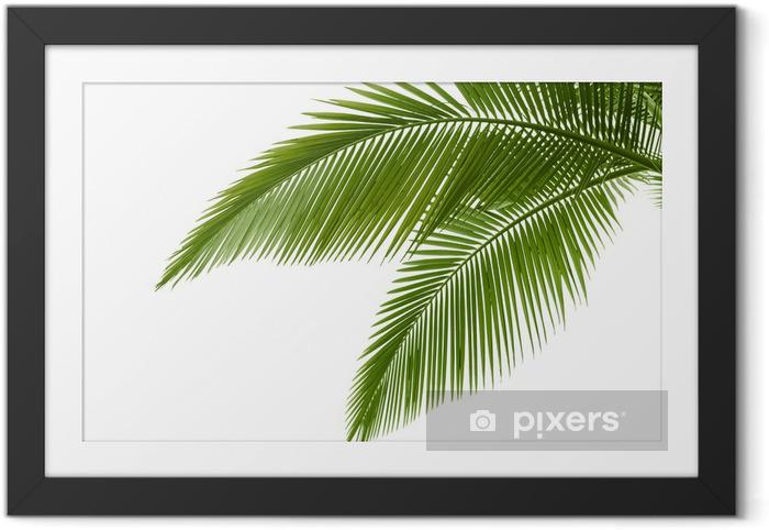Ingelijste Poster Palmbladen - Bomen en bladeren