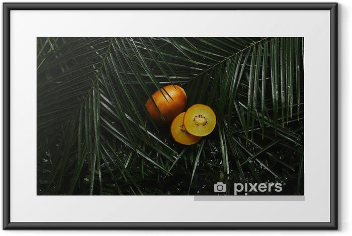 Plakat w ramie Bliska widok całego i plasterki żółtego kiwi i piękne zielone mokre tropikalne liście - Jedzenie