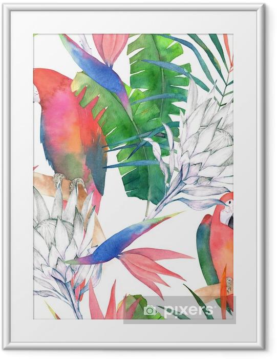 Plakat w ramie Tropikalny wzór z papugi, protea i liści. druk lato akwarela. egzotyczna ręka rysująca ilustracja - Zasoby graficzne