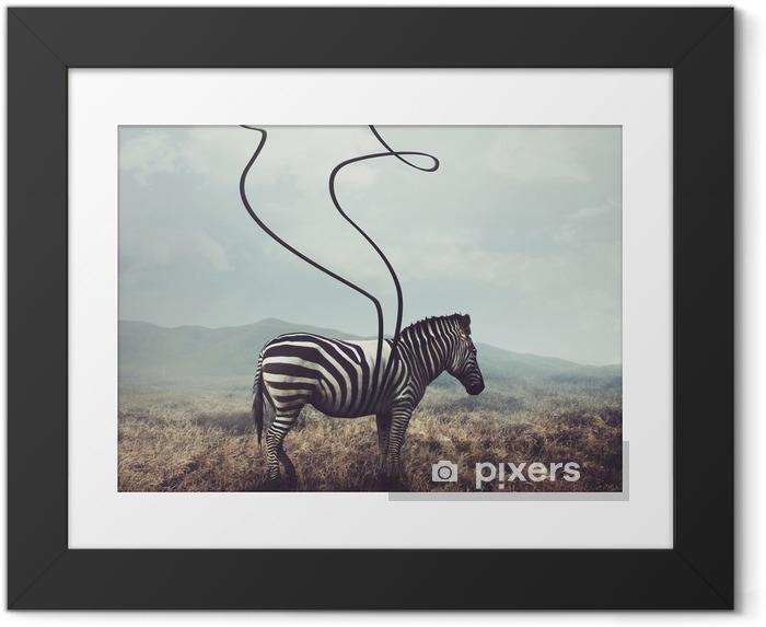 Gerahmtes Bild Zebra und Streifen - Tiere