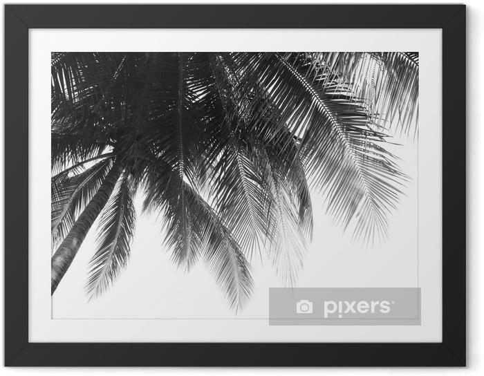 Gerahmtes Bild Schönes Palmenblatt auf weißem Hintergrund - Pflanzen und Blumen