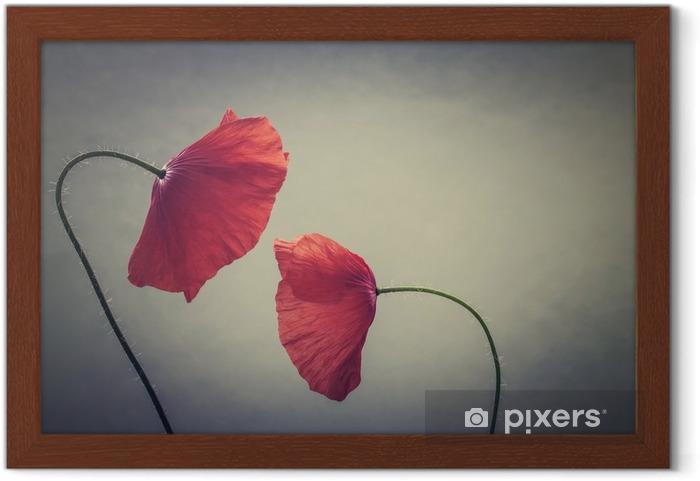 Obrazek w ramie Maki sztuki - Rośliny i kwiaty