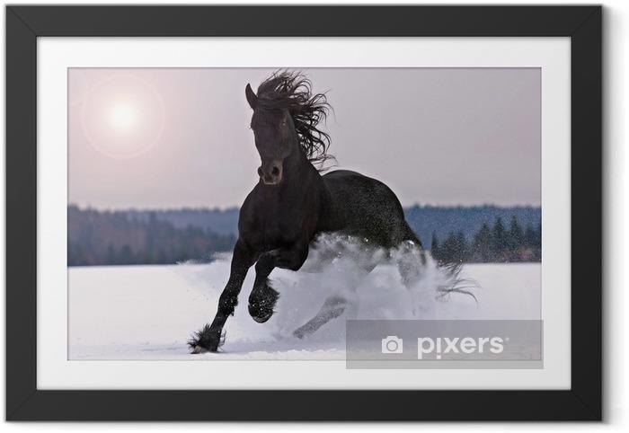 Obrazek w ramie Frisian jazda na śniegu - Tematy