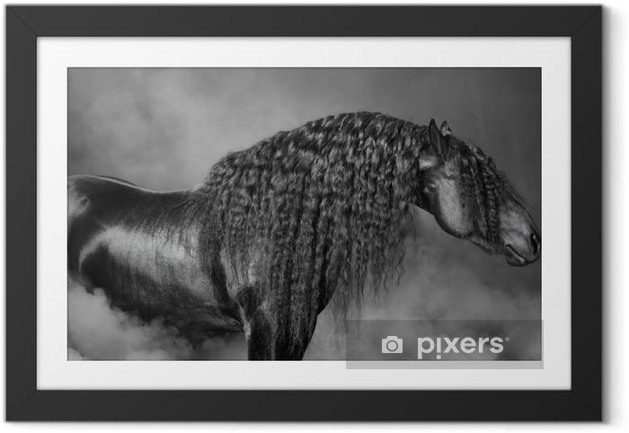 Obrazek w ramie Portrait of black Frisian horse with long mane in the smoke - Obrazy i plakaty Konie