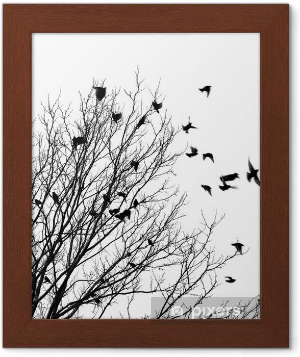 Lentäviä lintuja Kehystetty juliste -