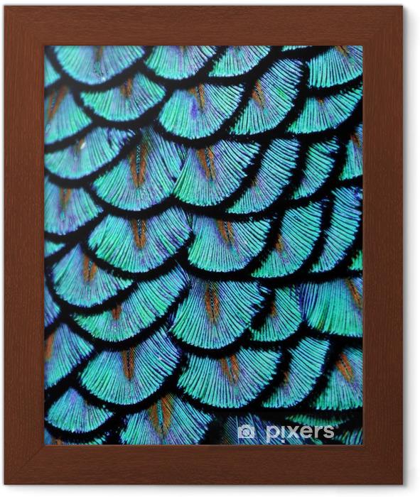 Póster com Moldura Pena azul - Animais