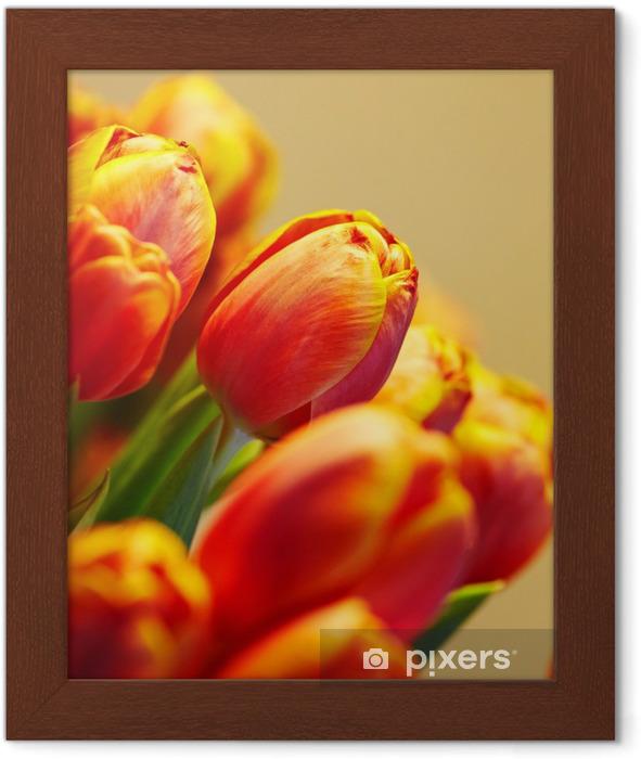 Gerahmtes Poster Haufen von orange Tulpen auf den Hintergrund in der gleichen Farbe - Themen