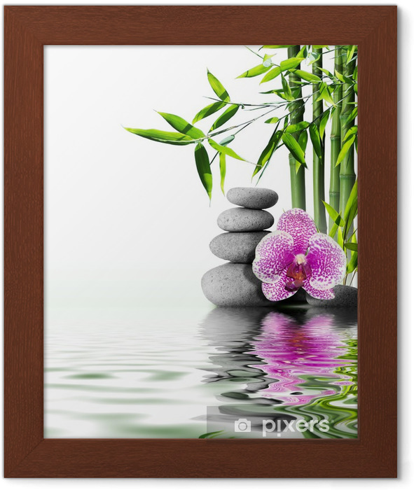 Gerahmtes Poster Lila Orchidee Blume Ende Bambus auf dem Wasser - Stile