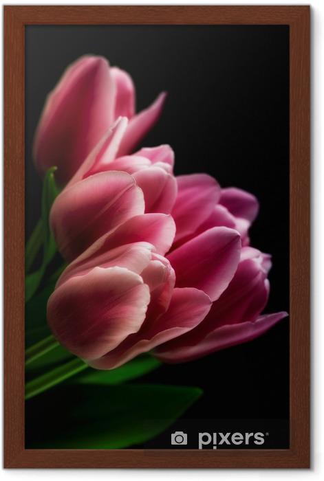 Póster Enmarcado Tulipanes de color rosa sobre fondo Negro - Temas