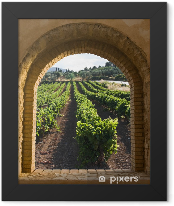 Arched Window On The Vineyard Framed Poster - Themes