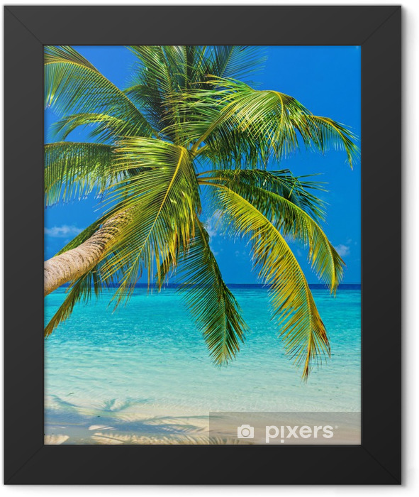 Tropical beach Framed Poster -