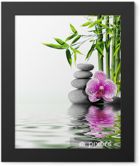 purple orchid flower end bamboo on water Framed Poster - Styles