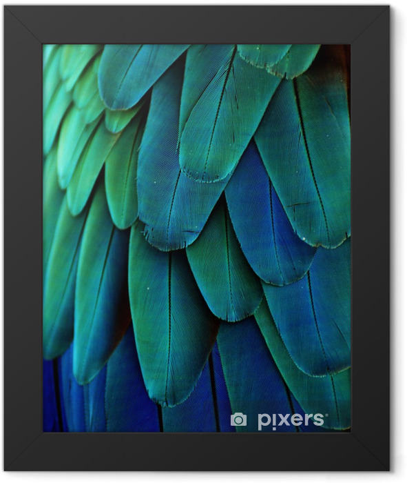 Macaw Feathers (Blue/Green) Framed Poster - iStaging
