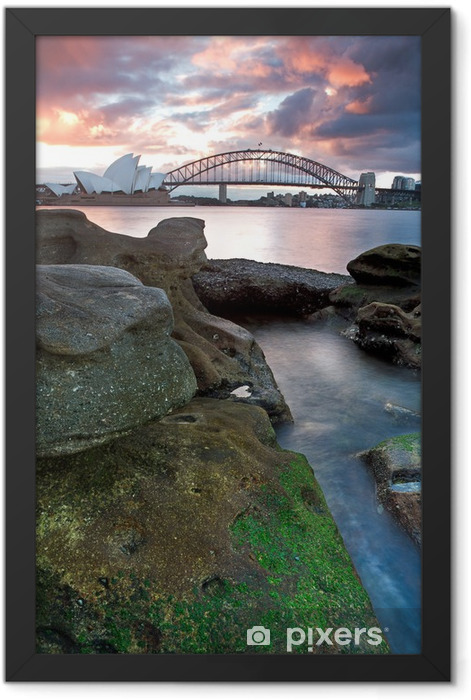 Sydney Opera House and harbour bridge Framed Poster - Themes