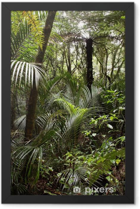 Plakat w ramie Tropikalna dżungla las - Tematy
