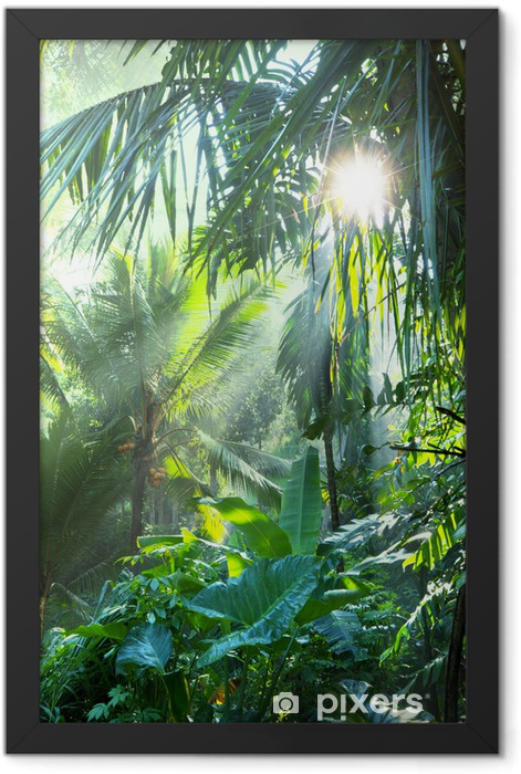 Plakat w ramie Dżungla - Tematy
