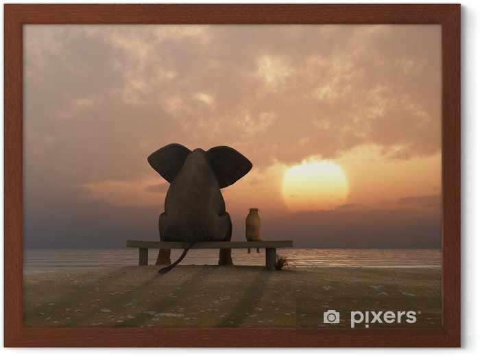 Plakat w ramie Słoń i pies siedzieć na plaży latem - Przeznaczenia