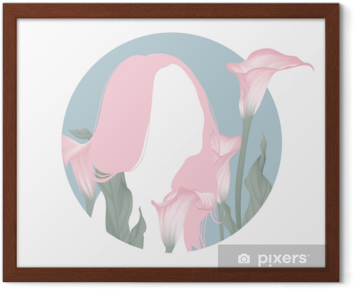 Pink long hair girl silhouette with blooming pink calla lily flowers in blue circle frame Framed Poster - People