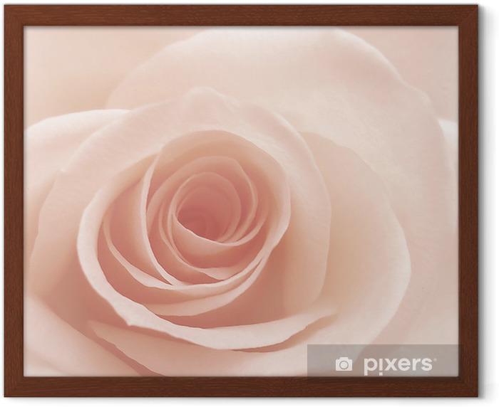 rose Framed Poster - Themes