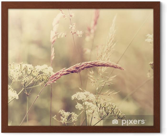Poster en cadre Summer meadow - Styles