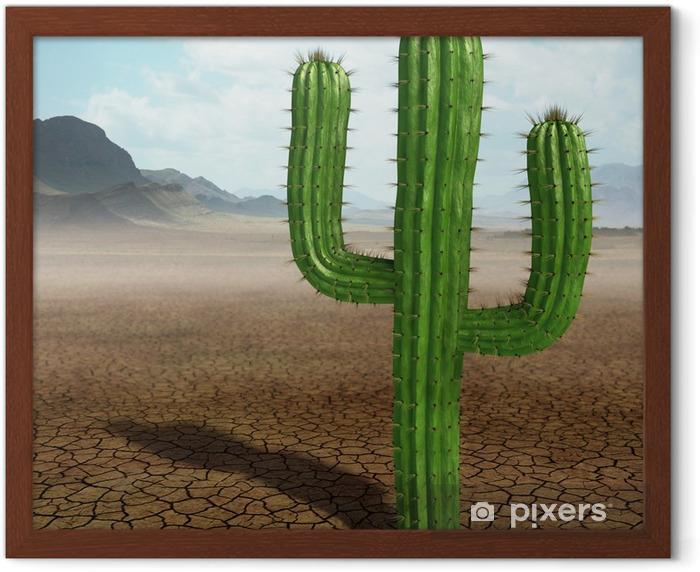 Póster Enmarcado Cactus en el desierto - Desierto