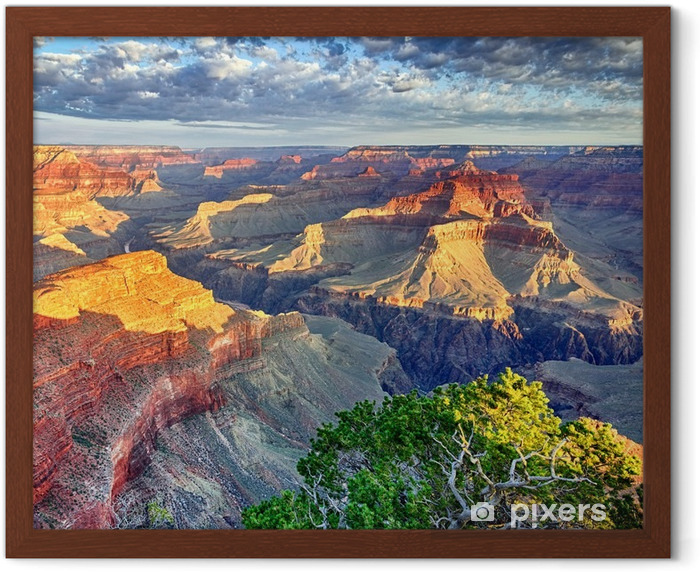 Morning light at the Grand Canyon Framed Poster - Themes