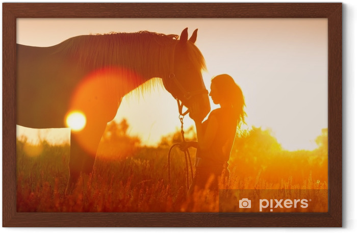 Beautiful silhuette of girl and horse at sunset Framed Poster - Animals