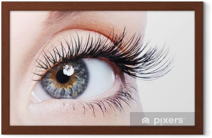Gerahmtes Poster Beauty weibliche Auge mit curl langen falschen Wimpern - Themen
