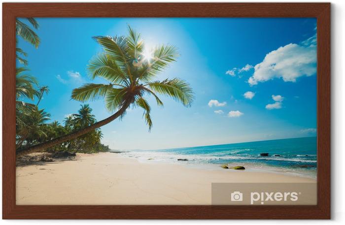 Poster en cadre Plage tropicale au soleil - Maldives