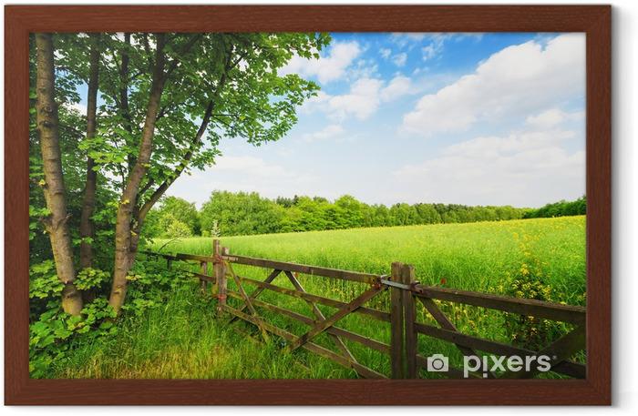Poster in Cornice Recinzione in campo verde sotto il cielo blu - Temi