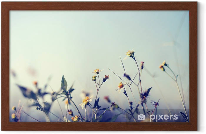 Plakat w ramie Archiwalne zdjęcie tle charakter z dzikich kwiatów i roślin - Rośliny i kwiaty