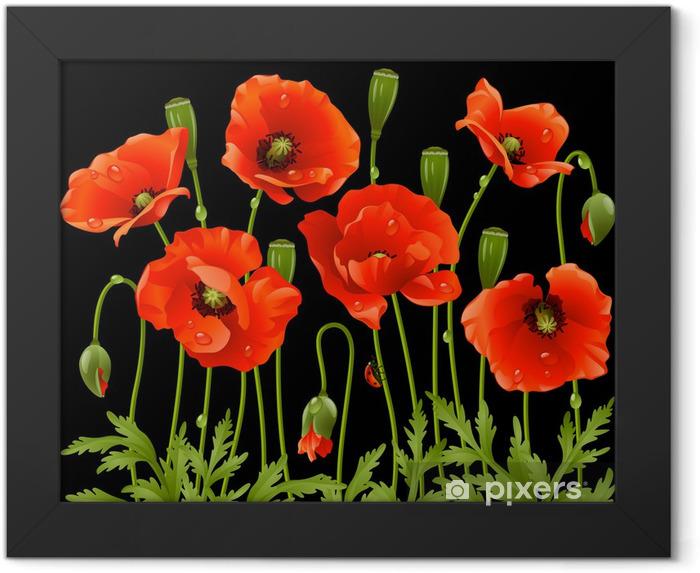 Plakat w ramie Wiosenne kwiaty: mak - Tematy