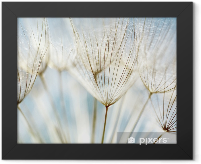 Abstract dandelion flower background Framed Poster - Themes