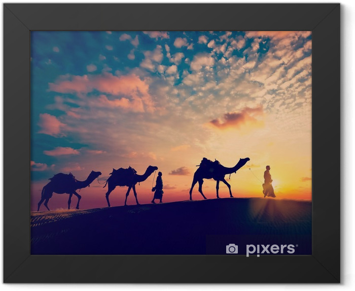 Two cameleers (camel drivers) with camels in dunes of desert Framed Poster - Sports