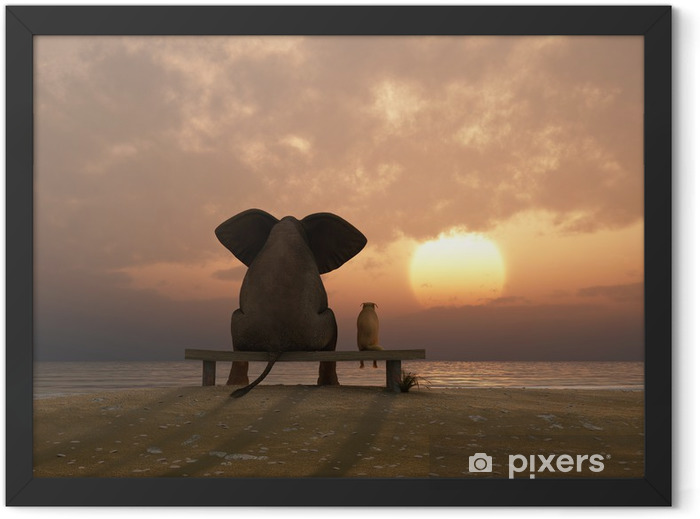 elephant and dog sit on a summer beach Framed Poster - Destinations
