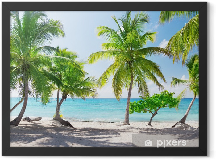 Paradise island in the Dominican Republic Framed Poster - Themes