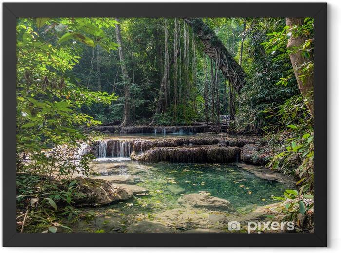 Plakat w ramie Liany w dżungli. Erawan National Park w Tajlandii - Tematy