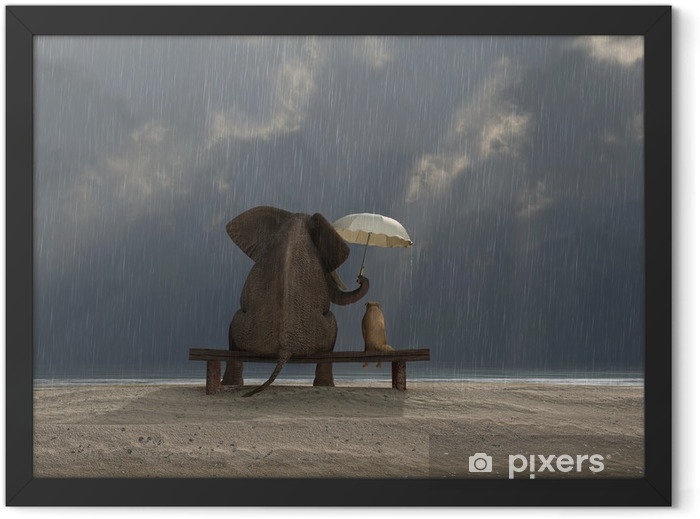 elephant and dog sit under the rain Framed Poster - Life