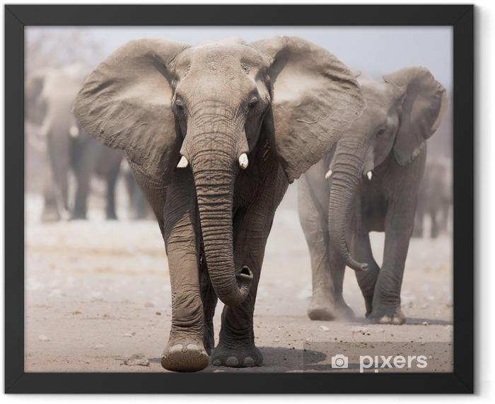 Elephant herd Framed Poster - Elephants