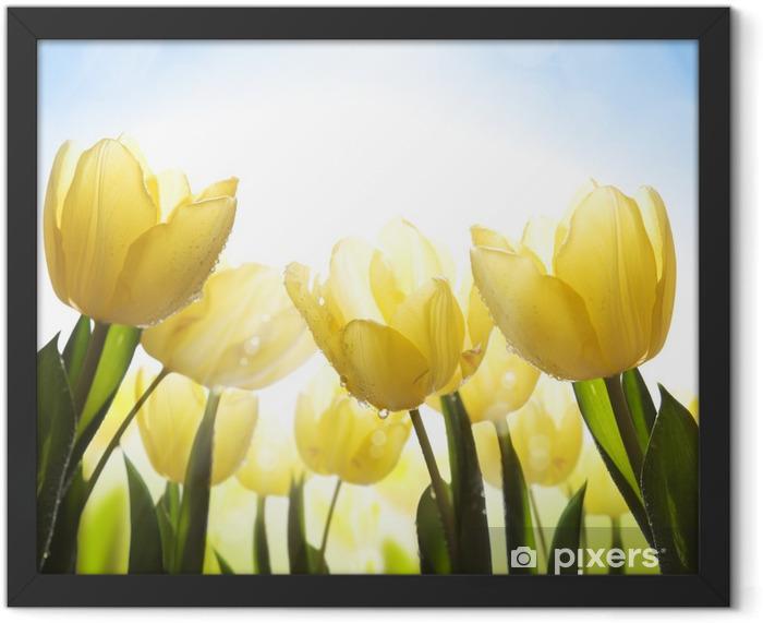 Plakat w ramie Sztuki dzikie kwiaty pokryte rosą w słońcu - Tematy
