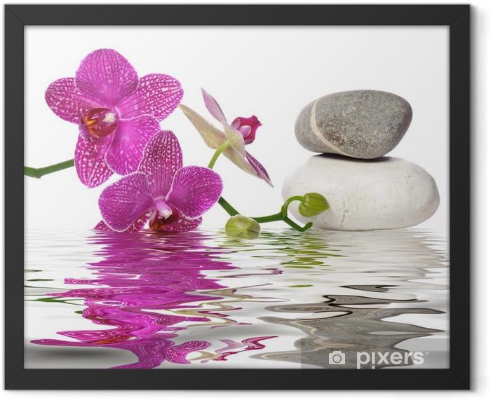 Einfach schöne Orchideen Framed Poster - Bestsellers