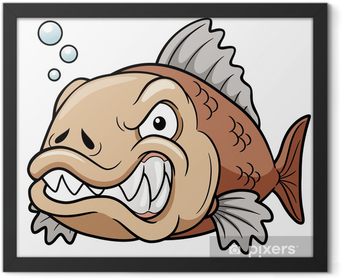 Poster en cadre Illustration vectorielle de bande dessinée de poissons en colère - Animaux marins