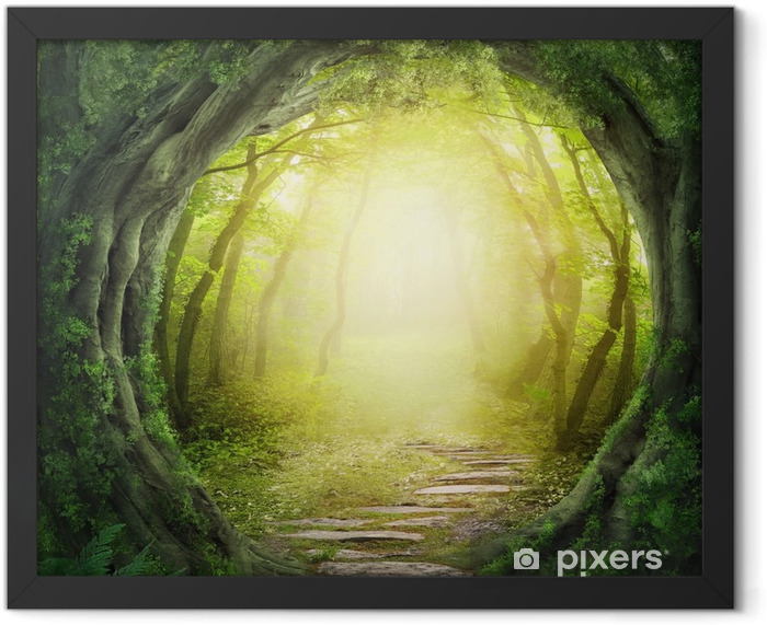 Road in dark forest Framed Poster - Themes