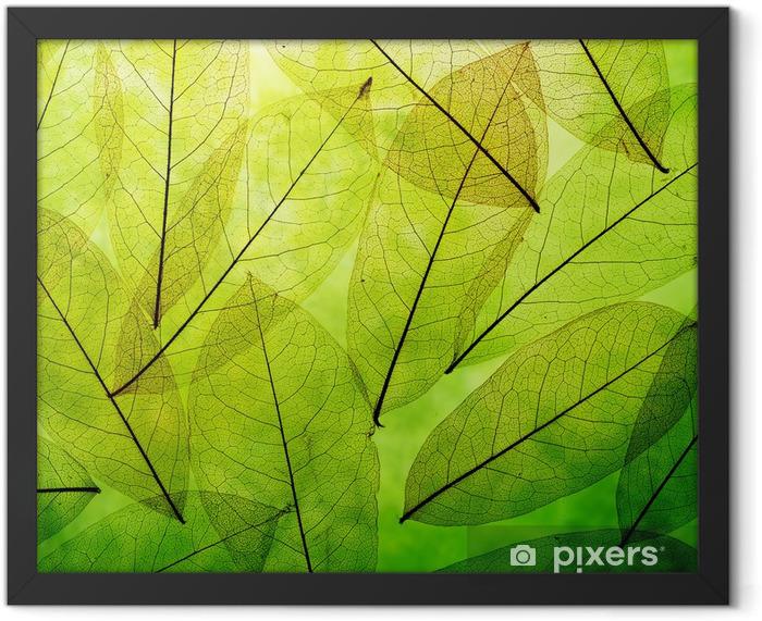 Green leaves vintage background Framed Poster - Themes
